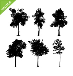 Tree silhouettes vector image