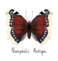 Butterfly Watercolor vector image