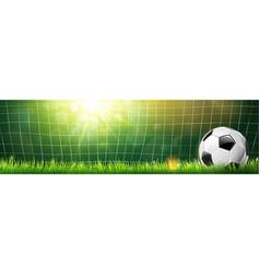 Soccer ball in goal vector