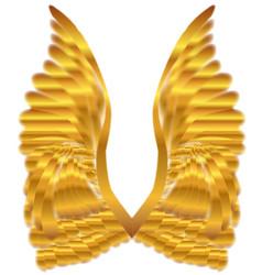Gold angel wings vector