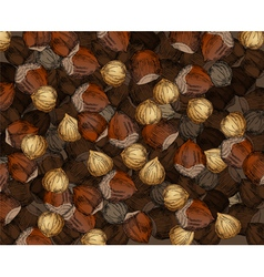 Hand Drawn Walnuts Texture Hazelnuts vector