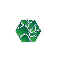 hexagon logo concept hexagon geometric polygonal vector image