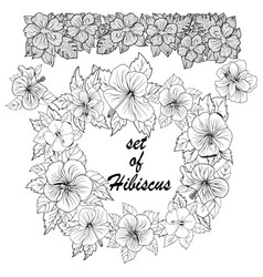set of hibiscus exotic tropic botany leaves and vector image