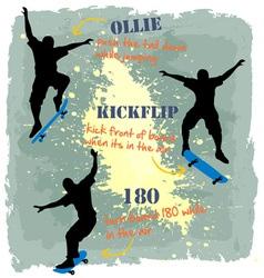 3 styles Skate board vector image