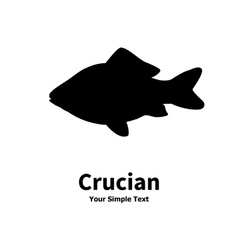 silhouette of crucian carp vector image vector image