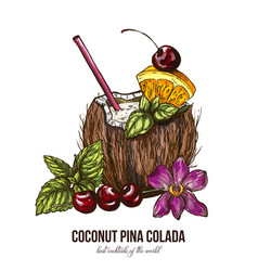 Coconut pina colada with orchid flower vector