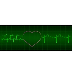 ecg from two hearts after love to one heart vector image