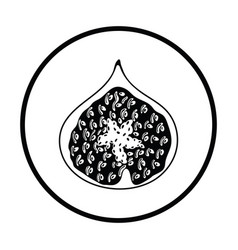 Icon of fig fruit vector
