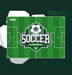 modern professional grass football soccer vector image
