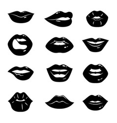 Monochrome beautiful and glossy vector