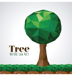 Nature low poly design vector