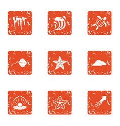 Starfish icons set grunge style vector