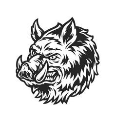 vintage angry wild boar head vector image