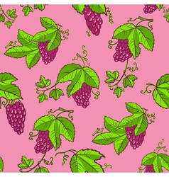 seamless pattern with grape and leaves vector image vector image