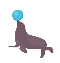 sea lion with a ball circus icon flat style vector image