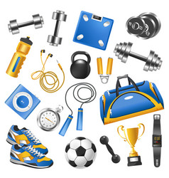 sport equipment for training set and gold cup vector image vector image