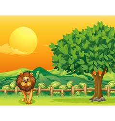 A lion at the cliff vector