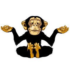 Cartoon chimp in meditation vector