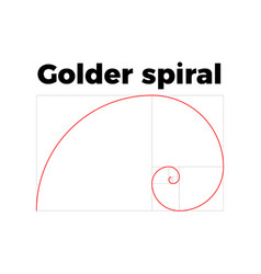 Golden ratio section vector
