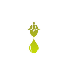 Jojoba nut with oil drop icon beauty and vector