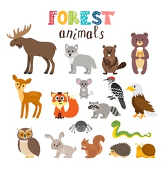 Set of cute forest animals in Woodland Cartoon vector