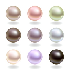 Spherical pearls vector image