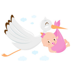 stork delivering a new baby girl vector image
