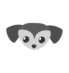 small dog face gray pet icon vector image