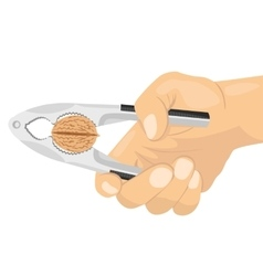 hand using a nutcracker to crack a nut vector image