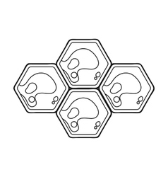 Honeycombs icon in outline style isolated on white vector image