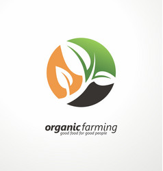 logo design layout with plant graphic vector image