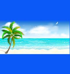 tropical sandy beach vector image