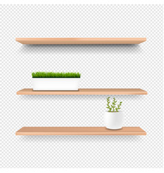 wooden shelf and pot isolated transparent vector image