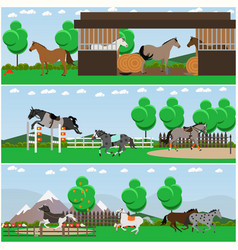 set of horse riding interior flat posters vector image vector image