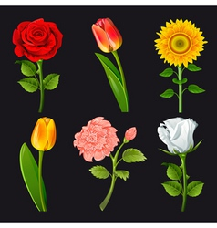 flower cartoons vector image vector image
