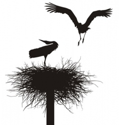 storks in the nest vector image