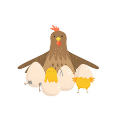 cock with several yellow chicks hatched from eggs vector image