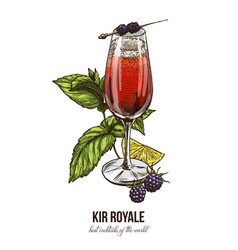 kir royale cocktail with blackberries vector image