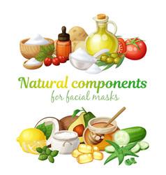 Natural components together facial vector