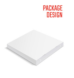 pizza package box 1 vector image