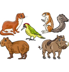 wild animals set cartoon vector image