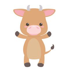 Bull cartoon design vector