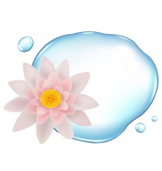 lotus over water vector image