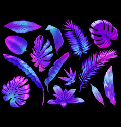 neon tropical leaves color exotic tree and plant vector image