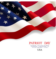 patriot day flag usa vector image