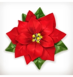 Poinsettia Christmas Star vector