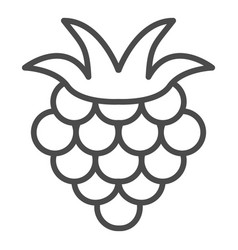 Raspberry outline icon fruit symbol healthy food vector