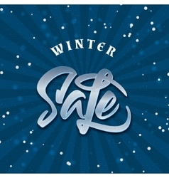 Sale winter insignia and labels for any use vector image