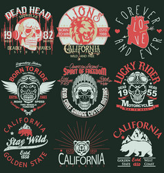 T-shirt stamp graphic set california sport wear vector