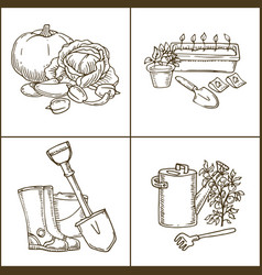 vegetablesflowers and garden tools for coloring vector image